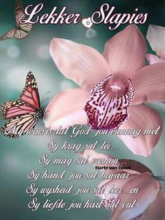 Bible Quotes, Qoutes, Evening Greetings, Good Night Blessings, Goeie Nag, Goeie More, Afrikaans Quotes, Christian Messages, Bible Prayers