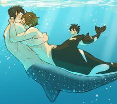 Sousuke x Makoto Mermaid Drawings, Mermaid Art, Chibi, Character Art, Character Design, Free Eternal Summer, Free Iwatobi Swim Club, Mermaids And Mermen, Merfolk
