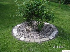 På turné i TRÄDGÅRDEN - Ett inredningsalbum på StyleRoom av cbaqke Landscaping Around Trees, Home Landscaping, Landscaping With Rocks, Front Yard Landscaping, Front Garden Landscape, Garden Edging, Garden Pictures, Cool Landscapes, Garden Projects