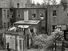 "September 1935. Washington, D.C. ""Negro back yards near Capitol."" A back alley view of some F Street tenements that are an interesting mix of appalling and appealing."