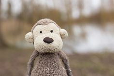 Check out these photographs by Shooting Little Stars! Little Star, Family Photography, Teddy Bear, In This Moment, Memories, Stars, Photographs, Animals, Natural