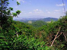 Reserva Biológica Federal do Tinguá – Wikipédia, a enciclopédia livre