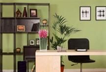 INFOGRAPHIC: How to Feng Shui your office - Management Today