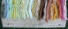 lil fish studios: a natural rainbow