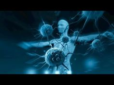 ✅ Zioła przeciwwirusowe – 12 najsilniej działających naturalnych substancji - YouTube T Cell, Chronic Stress, Chronic Illness, Alternative Health, Autoimmune Disease, Immune System, Things To Come, Fitness, Youtube