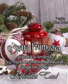 Anul Nou, Christmas Bulbs, Merry Christmas, Gin, Holiday Decor, Home Decor, Photos, Good Nite Images, Merry Little Christmas