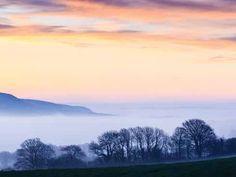 Dorset mists