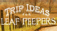 Tennessee trip ideas