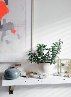 homedesigning:    32 Beautiful Indoor House Plants That Are Also Easy To Maintain  http://ift.tt/2rE1OnG