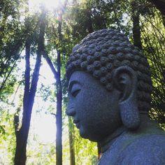 Templo Zu Lai / SP