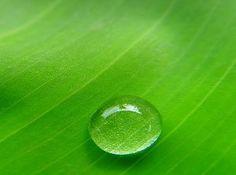 Centro Studi Spirituali 'Chsolu': Natura e contro natura