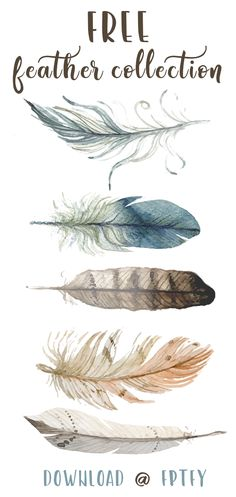 Free Hand Drawn Feather Collection - Free Pretty Things For You