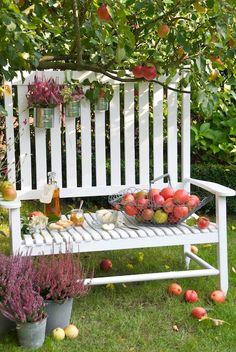 #MazzTuinmeubelen-- #Inspiratie #Garden #Bench #Tuin #Tuinbank #Design #Tuininrichting #Home