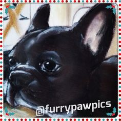#FOURThingsIWantForChristmas ?? Nope! Just ONE! An @furrypawpics portrait!! #furrypawlife www.furrypawpics.com #petart #instaart #art #pugs #frenchbulldogs #instapets #mansbestfriend