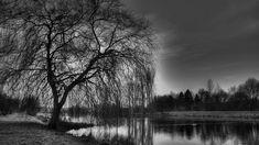 black and white photos | black wallpaper free hd: Black White Wallpapers