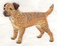 Border Terrier design (C4890) from www.Emblibrary.com