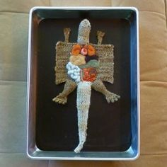 knitted alligator dissection.  aknitomy.
