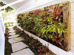 Orquidário OrquivivA: Jardins verticais