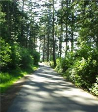 Washington Park in Anacortes.a beautiful place to camp or just hike anytime of the year.the scenery is gorgeous. Camping In Washington, Miss Washington, Washington State, Anacortes Washington, Evergreen State, San Juan Islands, Seaside Towns, Future Travel, Pacific Northwest