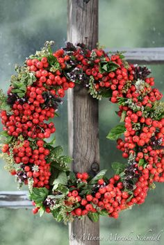 Blomsterverkstad: 10 fina höstkransar - så här gör du Seasonal Decor, Fall Decor, Holiday Decor, Hobbies And Crafts, Diy And Crafts, Anemone Flower, Flowers, Christmas Wreaths, Christmas Decorations