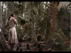 L'impero delle termiti giganti - 1977 Bert I. Gordon  - film completo