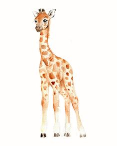 Giraffe Watercolor Nursery print5 X 7 by Marysflowergarden on Etsy, $8.00