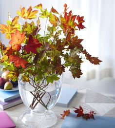 Seasonal autumn table centrepieces made from branches of colourful leaves