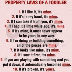 PROPERTY LAWS OF A TODDLER!
