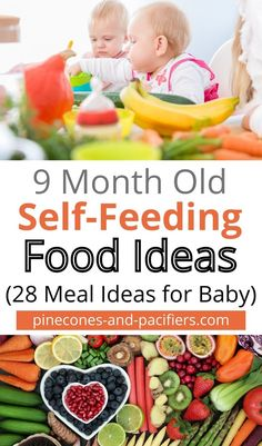 Wondering what to feed your baby under 1? How and when should you start solids? Check out this post for inspiration for food and meal ideas for 9 month old self-feeding. Once your baby is on to solid food try these 28 self-feeding meal ideas for babies and toddlers. #babyfood #babyledweaning #selffeeding #babymealideas #babyfeeding Baby Led Weaning Breakfast, Baby Led Weaning First Foods, Baby Breakfast, Baby Weaning, 9 Month Olds, 9th Month, Baby Month By Month, Feeding Baby Solids, Solids For Baby