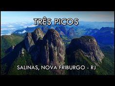 J. Fonseca shared a video