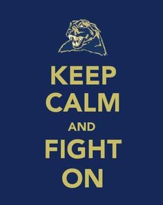 a0b9f47f401 keep calm and hail to pitt Pittsburgh Pirates
