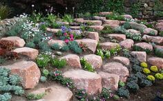 90 Beautiful Front Yard Rock Garden Landscaping Ideas - nearra news Rockery Garden, Rock Garden Plants, Sloped Garden, Succulents Garden, Alpine Garden, Alpine Plants, Landscaping With Rocks, Front Yard Landscaping, Landscaping Ideas
