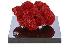 """Coral, Red  -  PHILMORE USA  -  7"""" x 7"""" x 5""""  -  OneKingsLane.com  -  ($370.00)  $199.00"""