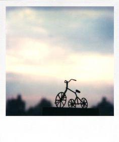 André Kertész - Polaroid