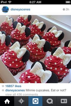 Minnie Mouse cupcakes follow me on Instergram @olivia_is_crazy_