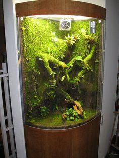 Orchidarium with EpiWeb-IIS 090120   Flickr - Photo Sharing!