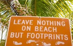 yup, clean beaches are the best spots