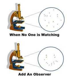 The Hawthorne Effect (also known as the Observer Effect), is something I have observed in my life more than once. The main thing I have seen is that when I start observingand taking close not…