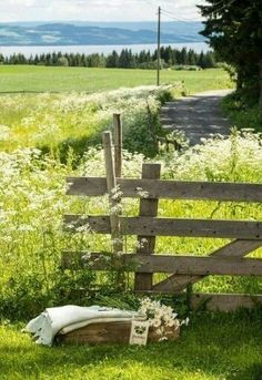 Country charm of the field around Rose cottage Country Charm, Country Life, Country Living, Country Style, Country Fences, Country Roads, Esprit Country, Flora Und Fauna, Country Landscaping