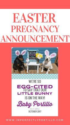 24 best pregnancy announcement ideas images on pinterest in 2018