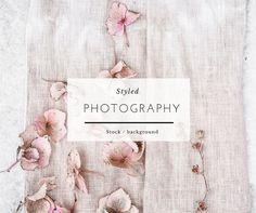 Stock Photography  Flowers Hydrangea Blush Summer by PASSIONSHAKE