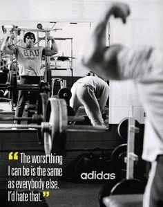 Arnold Schwarzenegger Motivational Wallpaper Wallpapers