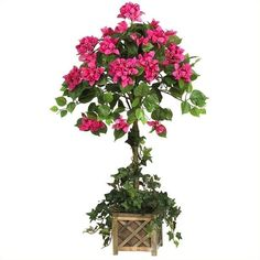 Nearly Natural Bougainvillea Topiary with Wood Box ($76) ❤ liked on Polyvore featuring home, home decor, floral decor, wooden flower planters, silk flower bouquets, wood planter, artificial flower arrangement and fake flower bouquets