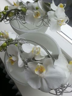 Armcorsages orchidee Wedding Ideas, Table Decorations, Home Decor, Flowers, Decoration Home, Room Decor, Home Interior Design, Wedding Ceremony Ideas, Dinner Table Decorations