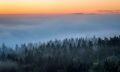 "Sun is rising behind the misty forest scenery at Aulanko Nature reserve, Hämeenlinna, Finland.  If you want to see more my work,<p><a href=""www.facebook.com/laurilohiphoto"">Check out my Facebook page</a></p>"