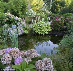 Modern Diy Garden Pond Waterfall Ideas For Backyard, Backyard Water Feature, Ponds Backyard, Garden Ponds, Pond Landscaping, Landscaping With Rocks, Diy Garden, Dream Garden, Hydrangea Macrophylla, Pond Waterfall