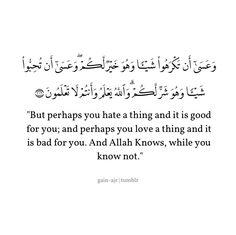Quran, Surat Al Baqarah, Ayat 216 Hadith Quotes, Allah Quotes, Muslim Quotes, Quran Quotes Inspirational, Beautiful Islamic Quotes, Motivational, Reminder Quotes, Words Quotes, Wisdom Quotes
