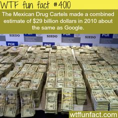 How much does the Mexican Drug Cartels make - WTF fun facts