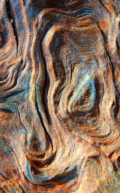 Old Wood Texture, Texture Art, Natural Texture, Earth Texture, Patterns In Nature, Textures Patterns, Art Grunge, Cat Profile, Alien Concept Art
