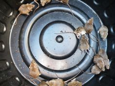 SwifTrap is a simple, effective, environmentally friendly, humane . Mouse Traps, Simple, Rat Traps